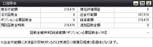 2013年3月31日の資産状況FX